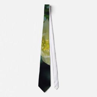 Flor columbine bonita y significado corbatas personalizadas