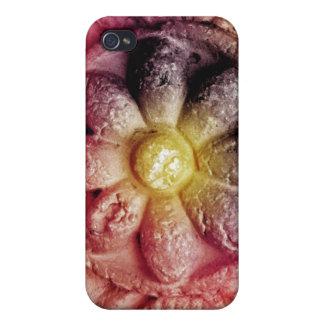flor concreta colorida iPhone 4 funda
