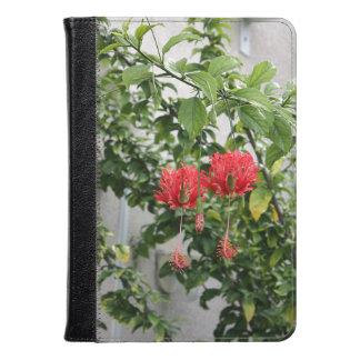 Flor coralina franjada tropical del hibisco