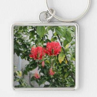 Flor coralina franjada tropical del hibisco llavero cuadrado plateado