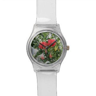 Flor coralina franjada tropical del hibisco reloj