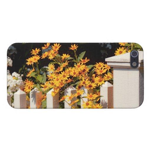 Flor - Coreopsis - el calor del verano iPhone 5 Cárcasa