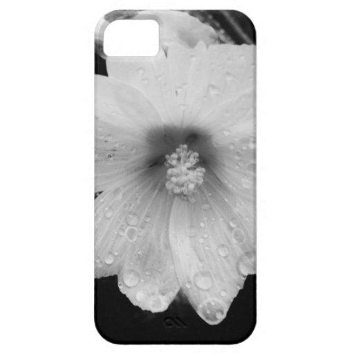 Flor de BW con las gotas de agua iPhone 5 Case-Mate Coberturas