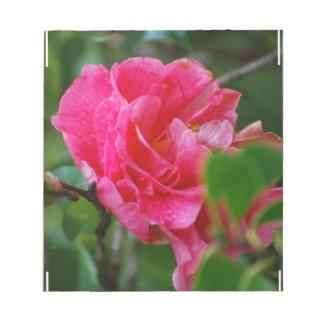 Flor de Camelia de las rosas fuertes Blocs De Papel
