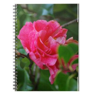 Flor de Camelia de las rosas fuertes Libreta