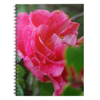 Flor de Camelia de las rosas fuertes Libro De Apuntes Con Espiral