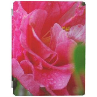 Flor de Camelia de las rosas fuertes Cover De iPad