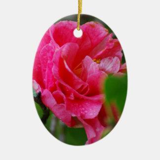 Flor de Camelia de las rosas fuertes Ornamente De Reyes