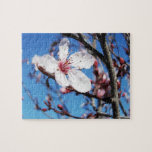 Flor de cerezo 2 puzzle con fotos