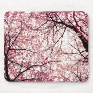 flor de cerezo 2 tapetes de raton