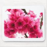 Flor de cerezo alfombrillas de raton