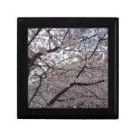 Flor de cerezo, caja de regalo negra de la laca