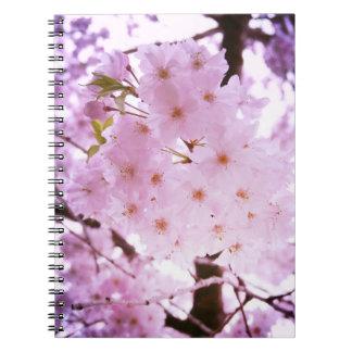 Flor de cerezo cuadernos