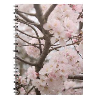 Flor de cerezo libros de apuntes