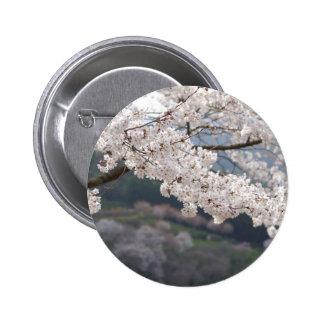 Flor de cerezo de Japón Kumamoto Pin Redondo 5 Cm