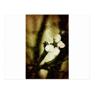 Flor de cerezo de la sepia tarjetas postales