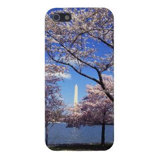 Flor de cerezo en Washington DC iPhone 5 Carcasas