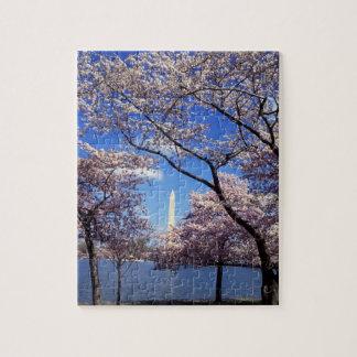 Flor de cerezo en Washington DC Rompecabezas Con Fotos