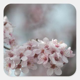 Flor de cerezo floral calcomanías cuadradases