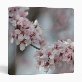Flor de cerezo floral