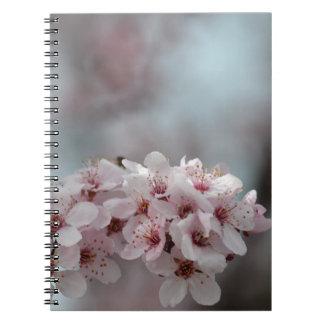 Flor de cerezo floral libretas espirales