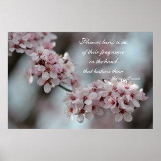Flor de cerezo floral póster