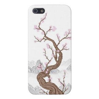 Flor de cerezo iPhone 5 carcasa