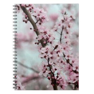 Flor de cerezo hermosa de la primavera libro de apuntes con espiral