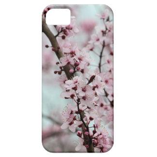 Flor de cerezo hermosa de la primavera iPhone 5 fundas