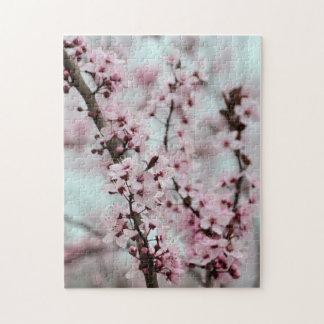 Flor de cerezo hermosa de la primavera rompecabeza con fotos