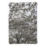 Flor de cerezo iPad mini protectores