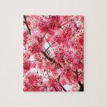 Flor de cerezo japonesa (2013) puzzles
