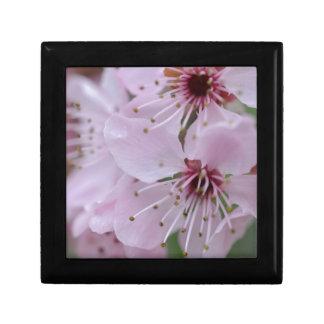 Flor de cerezo japonesa caja de regalo