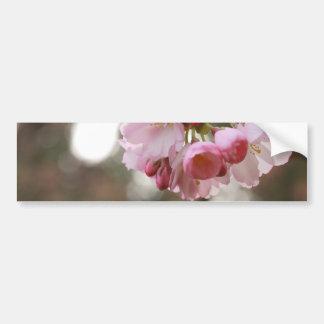 flor de cerezo japonesa en la luz pegatina para auto