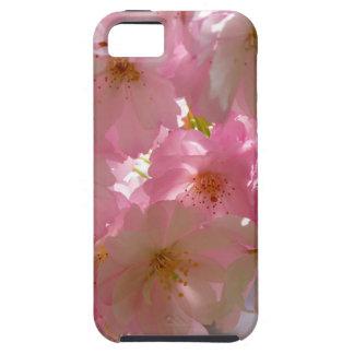 Flor de cerezo japonesa iPhone 5 protector