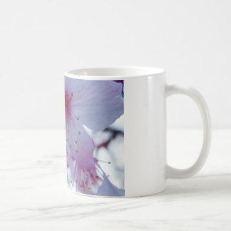 Flor de cerezo japonesa taza