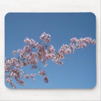 Flor de cerezo Mousepad