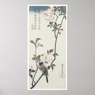 Flor de cerezo Petaled doble, Hiroshige, 1830 Póster