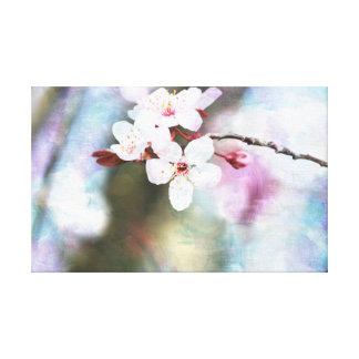 Flor de cerezo pintada lona estirada galerias