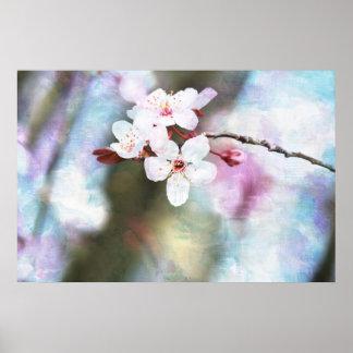 Flor de cerezo pintada póster