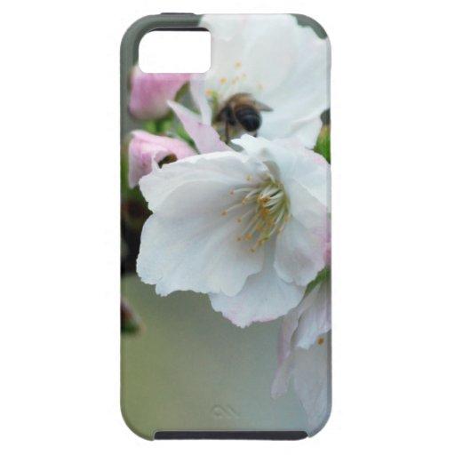 Flor de cerezo radiante iPhone 5 Case-Mate cobertura