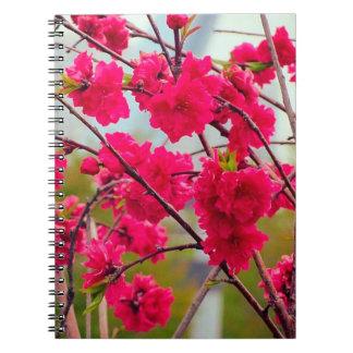 Flor de cerezo roja libros de apuntes