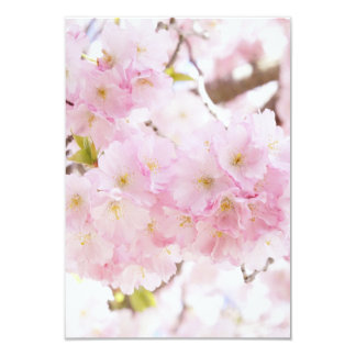 """Flor de cerezo rosada del árbol invitación 3.5"""" x 5"""""""