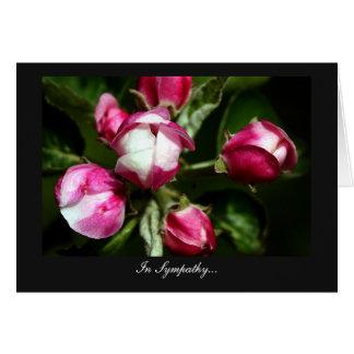 Flor de cerezo rosada - en condolencia tarjeta de felicitación