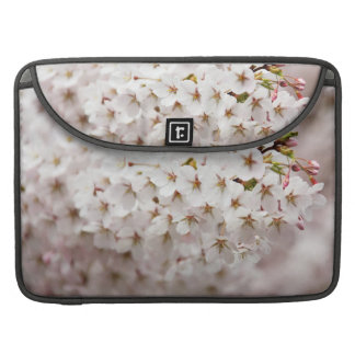 Flor de cerezo rosada fundas para macbook pro