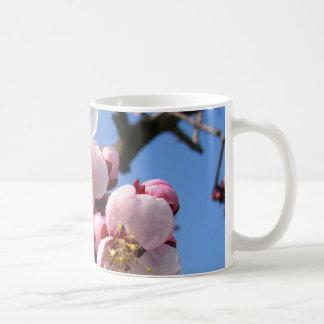 Flor de cerezo Sakura Taza