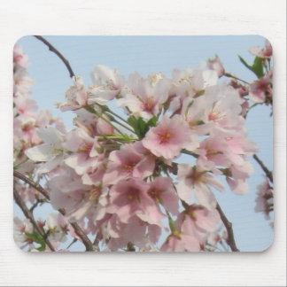 Flor de cerezo tapete de raton