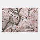 Flor de cerezo toalla