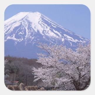 Flor de cerezo y el monte Fuji Calcomanías Cuadradases