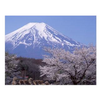 Flor de cerezo y el monte Fuji Tarjetas Postales